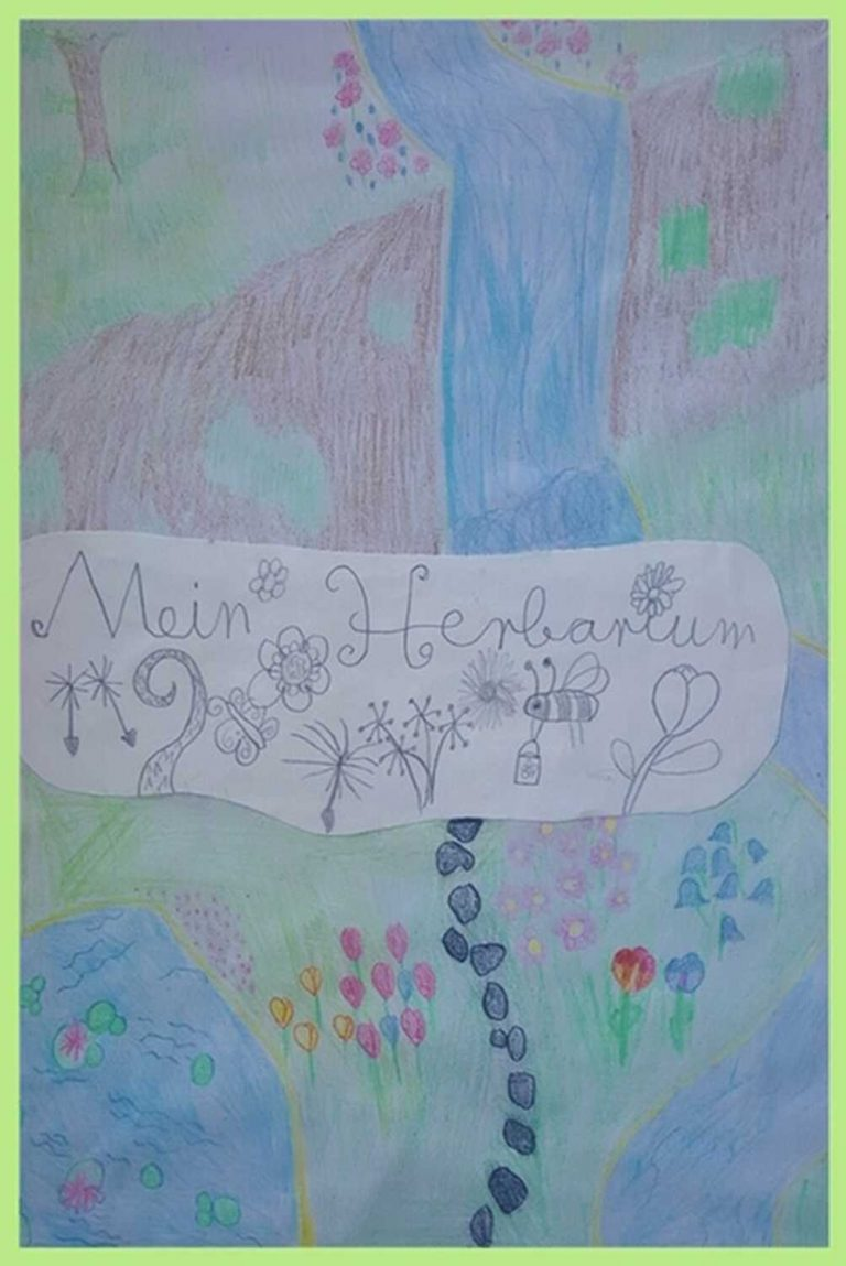 herbarium-6